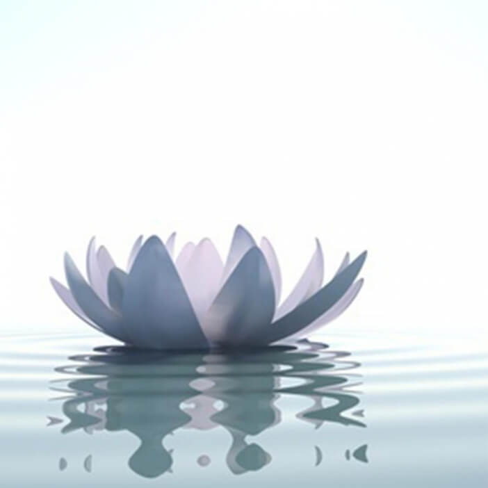 Senteur Lotus