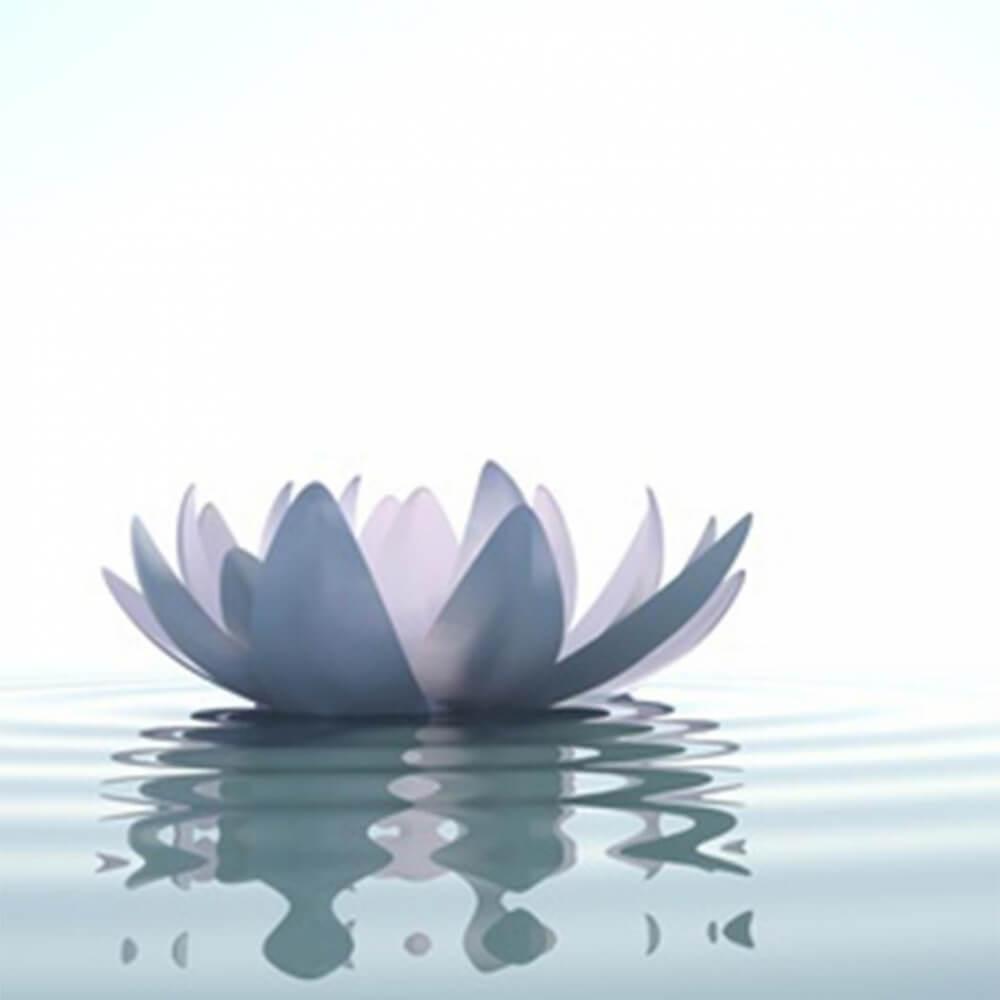 Parfum Lotus