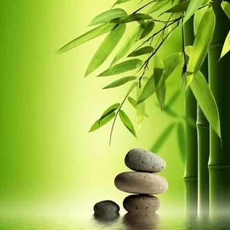 Parfum Bambou