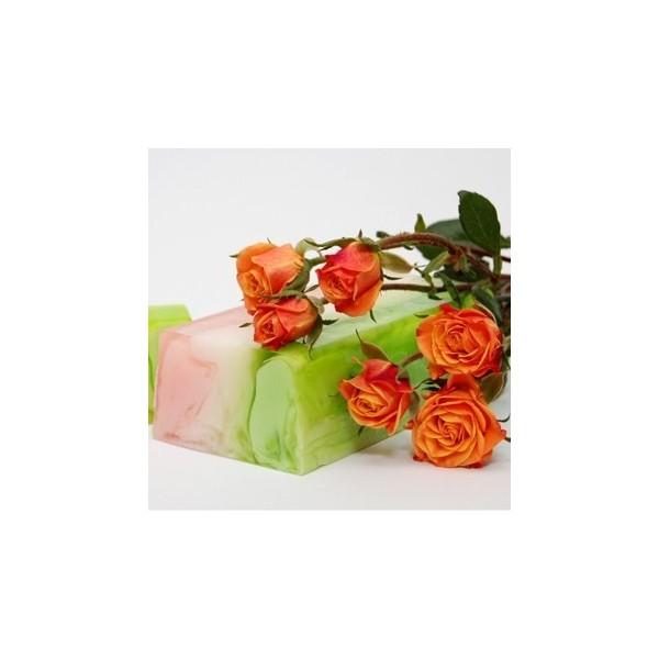 radiateur schema chauffage boutique de fleurs au maroc. Black Bedroom Furniture Sets. Home Design Ideas