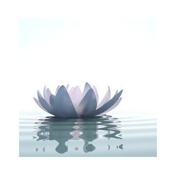"""Recharge """"200 ml"""" Lotus"""